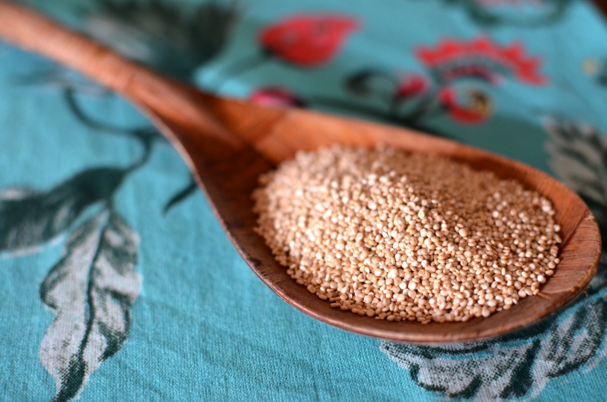 quinua em grãos