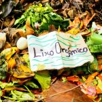 como separar lixo orgânico