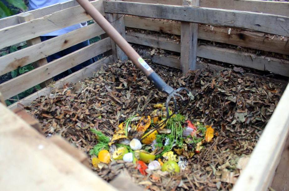 como fazer adubo orgânico
