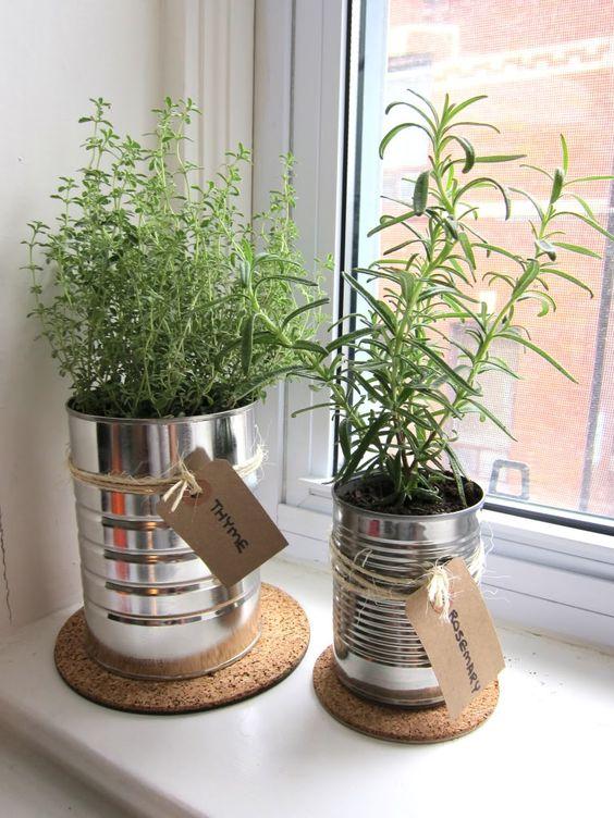 ideias para hortas em apartamento