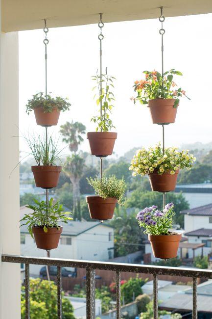 horta de alimentos orgânicos em casa