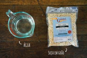 Ingredientes para fazer leite de soja