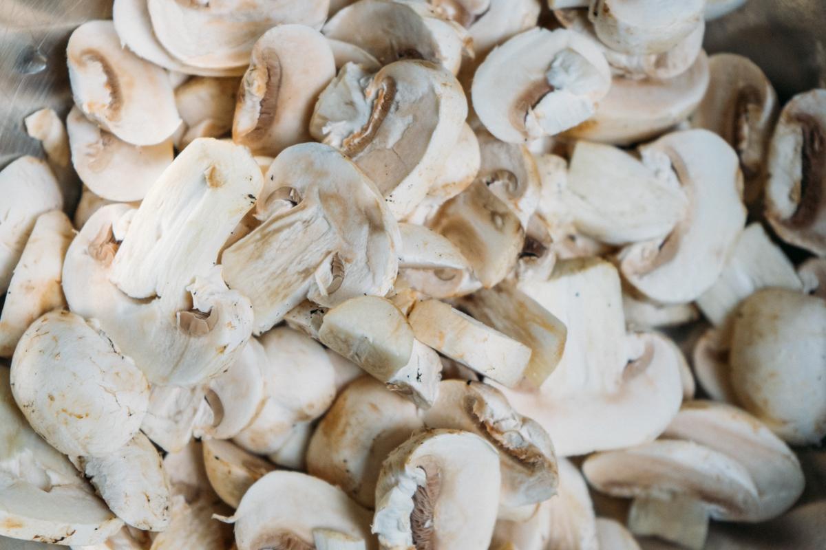 escondidinho de aipim com cogumelos